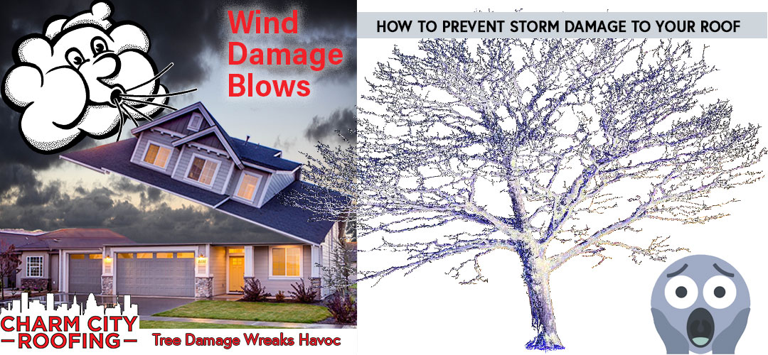 Storm Damage To Your Roof And How To Prevent It