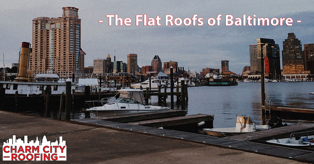The Flat Roofs Of Baltimore By Rafael Alvarez