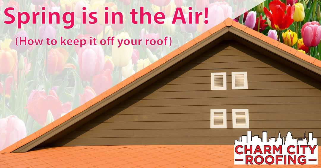 Charm City Roofing Spring Roof Maintenance